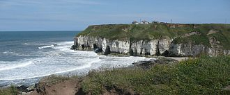 Flamborough Bird Observatory